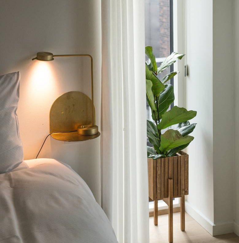 Die Richtige Zimmerpflanze Fur Ihr Schlafzimmer Der Schlaf Und Raum Blog